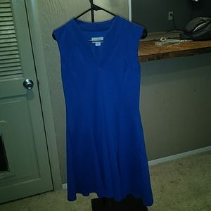 Jessica Simpson V neckline sleeveless flare dress